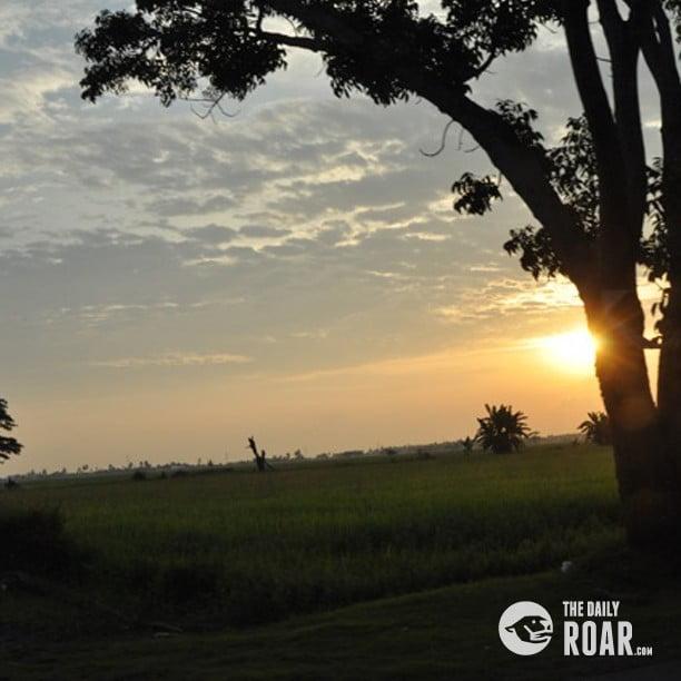 Tanjung2