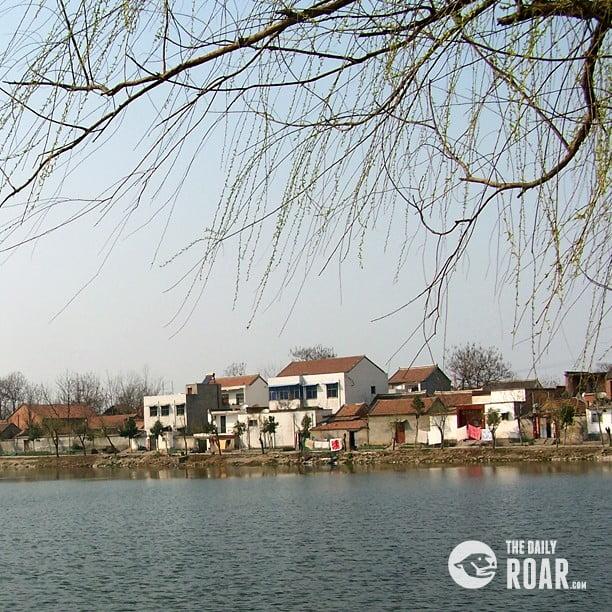 jinshan4