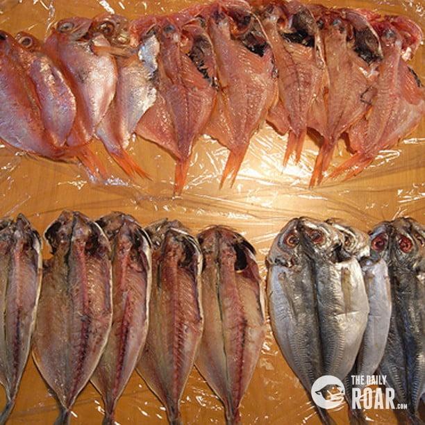 driedfish2