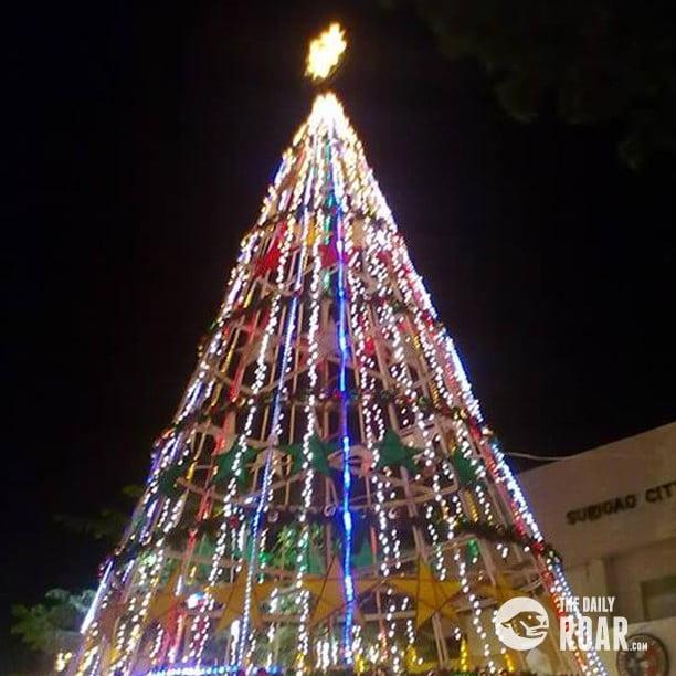 Surigaotree