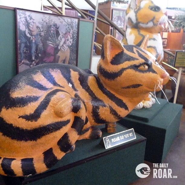 kuchingcat1